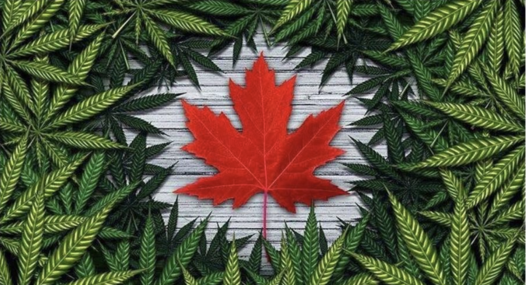 Canada Just Became Your Favorite Country